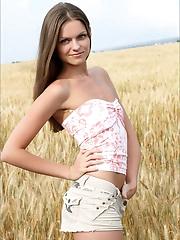 Tessa | Golden Harvest