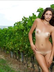 Hailey | Wine Country